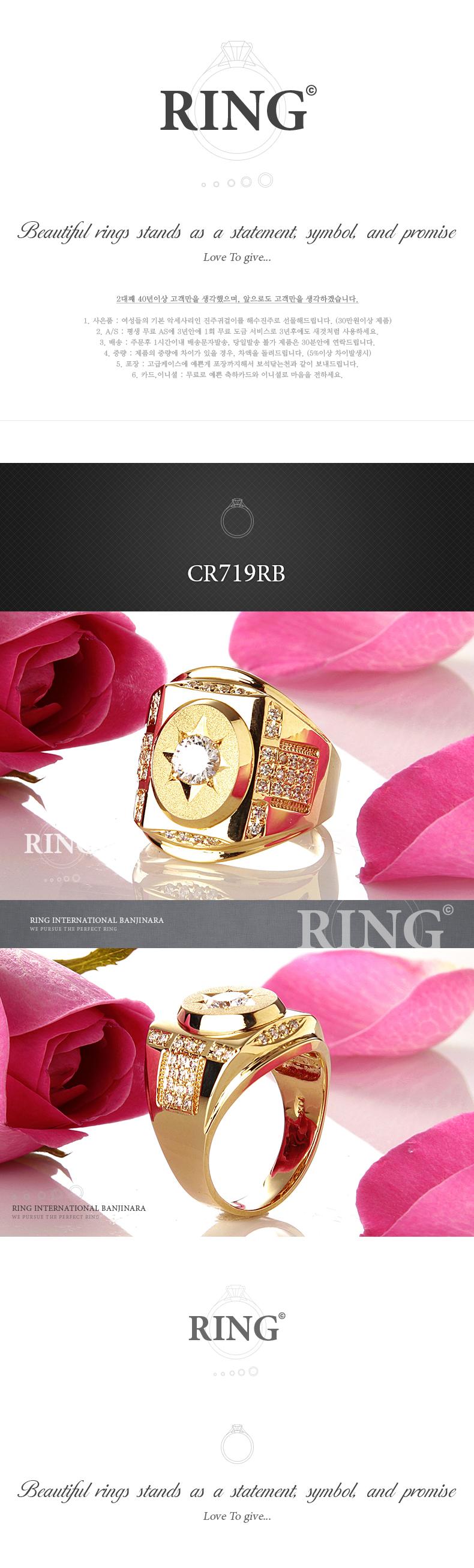 cr719rb_d.jpg